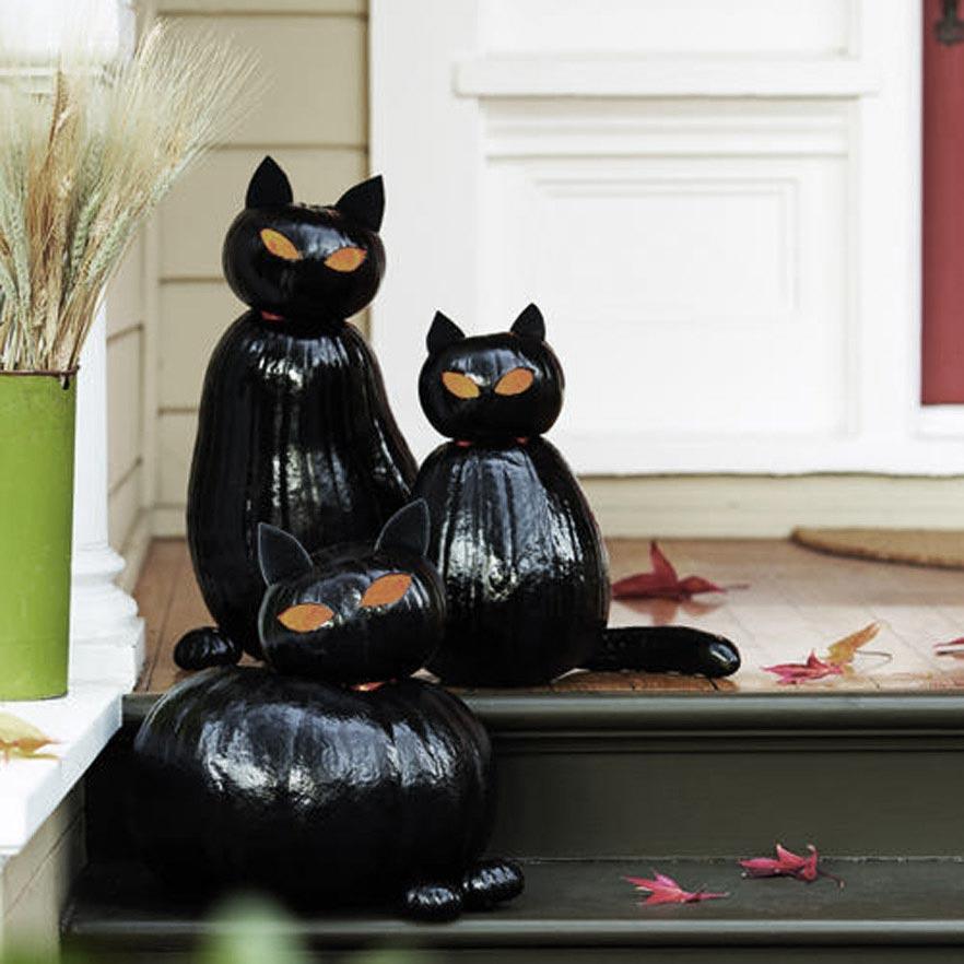 Gato negro para Halloween